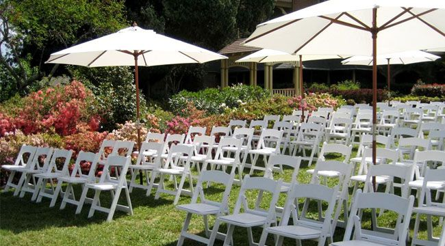 Chair Hire Sydney Wedding Chair Hire Summer Wedding Outdoor Outdoor Wedding