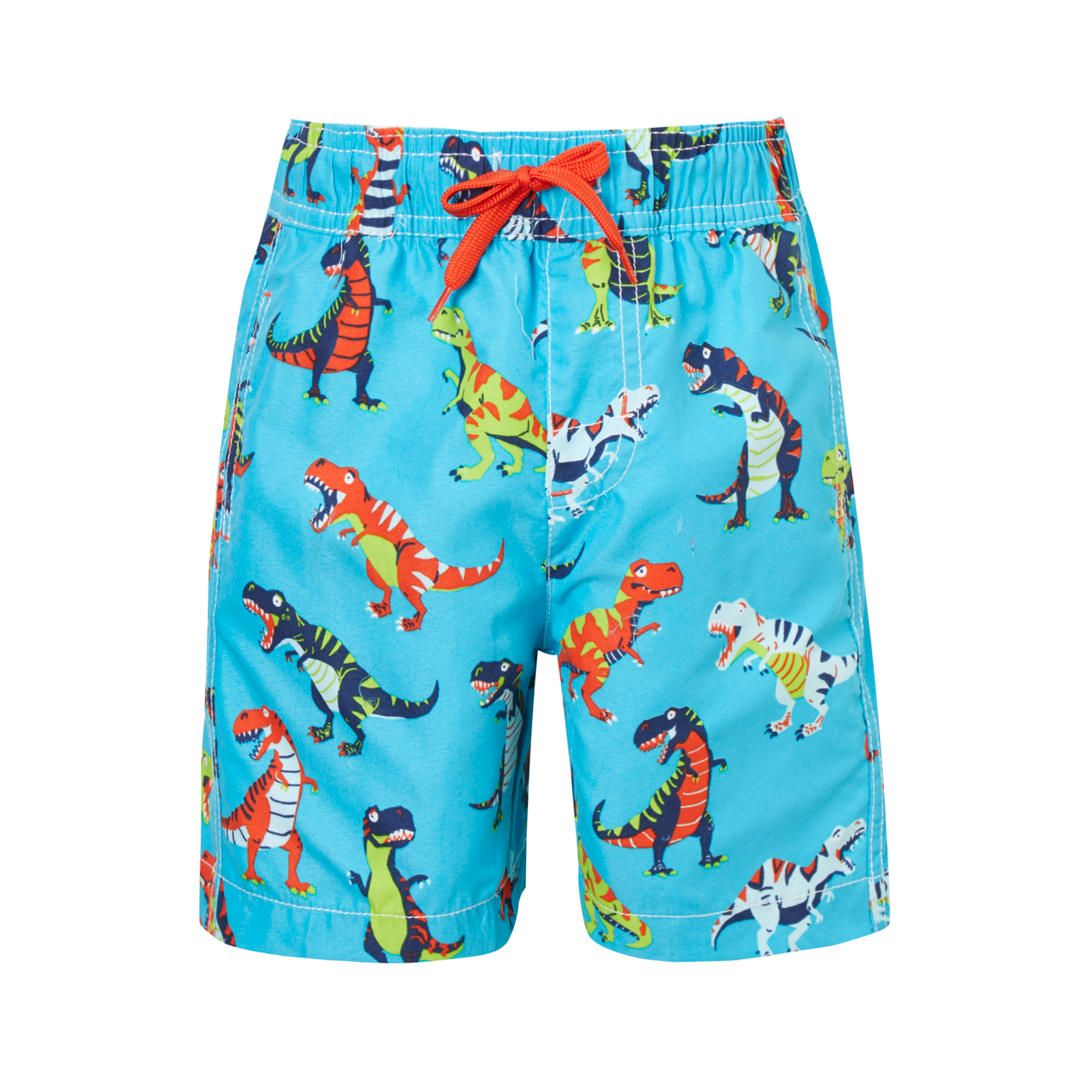 Roaring Dinosaurs Swim Shorts Mens Swim Trunks Beach Shorts Board Shorts
