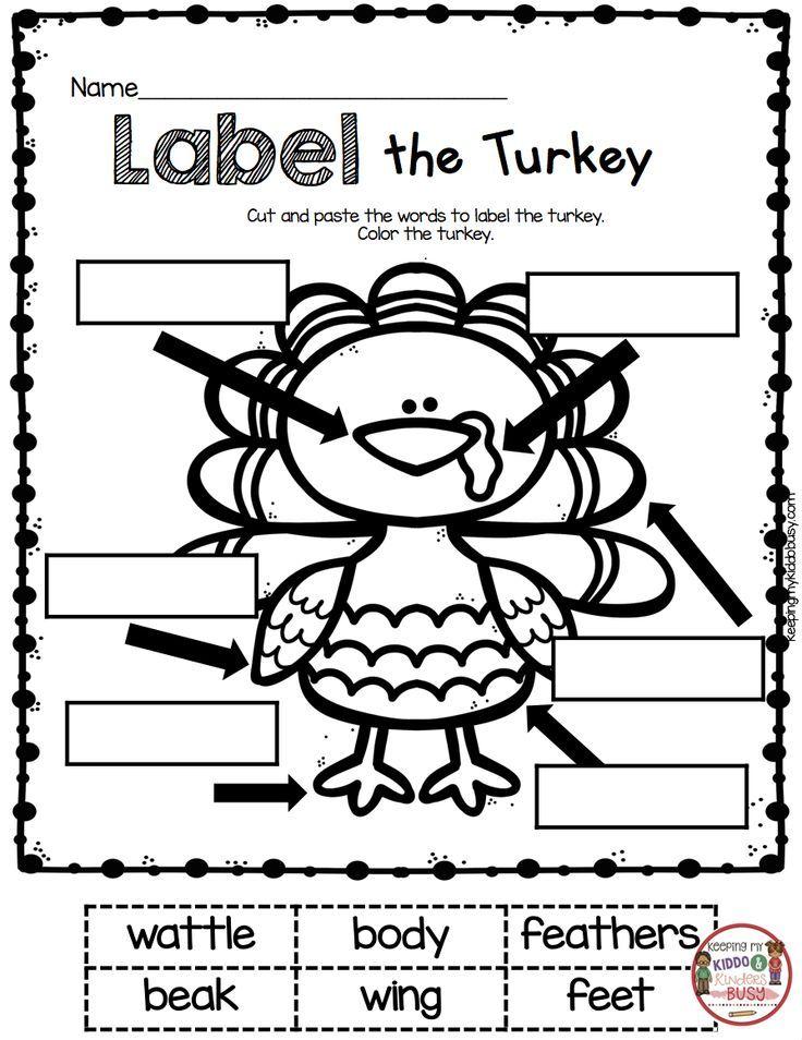 November Math And Literacy Pack Freebies Thanksgiving Kindergarten Thanksgiving Classroom Thanksgiving School