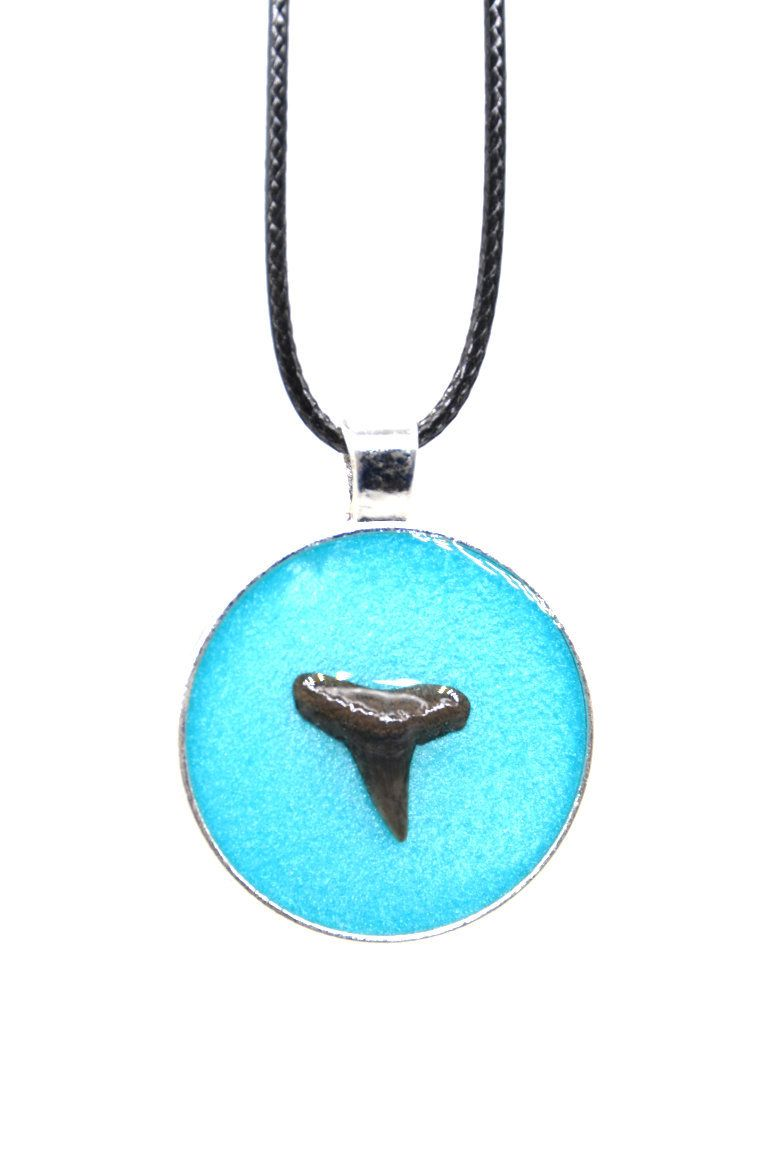 Real Shark teeth circle pendant necklace handmade epoxy resin necklace blue costume jewelry