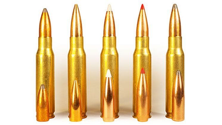 The  308 Win  works well with a variety of bullet weights  Good