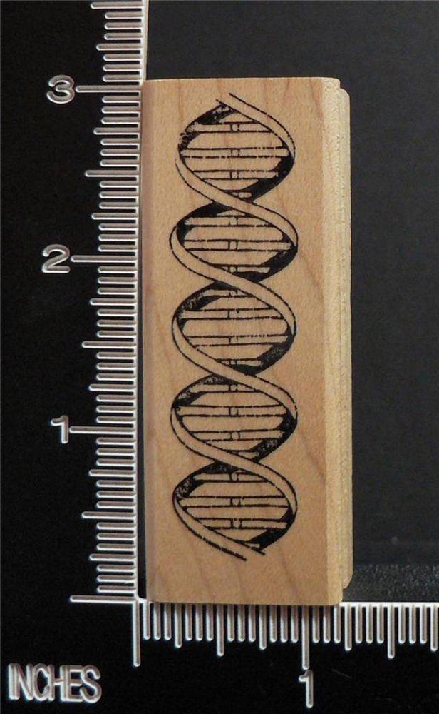 Genetic Molecule Scientific Symbol For Dna Rubber Stamp Rubber