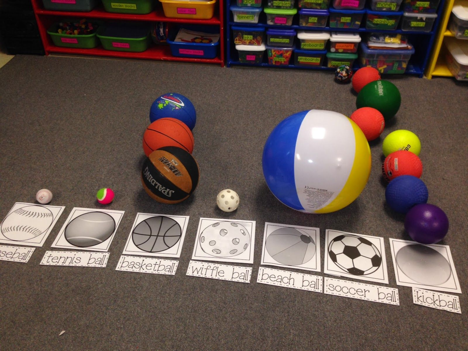 Study Use Ball Collection To Create A Floor Graph Can Be