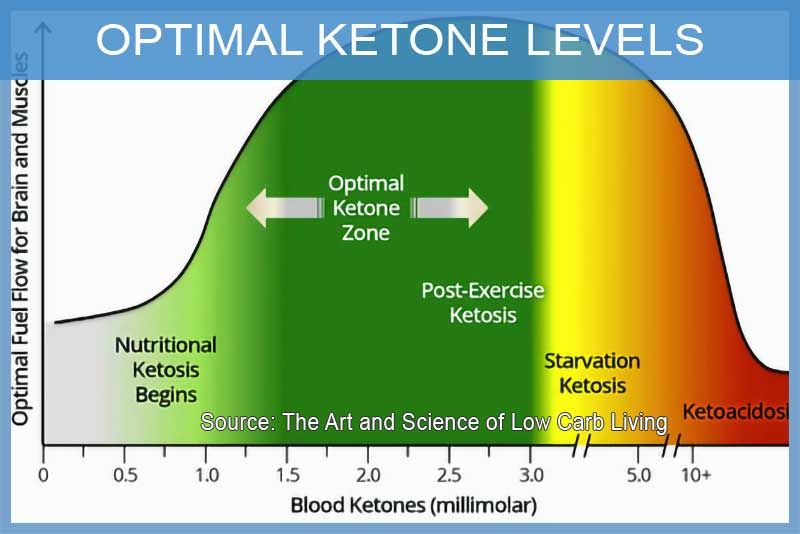 blood levels for keto diet