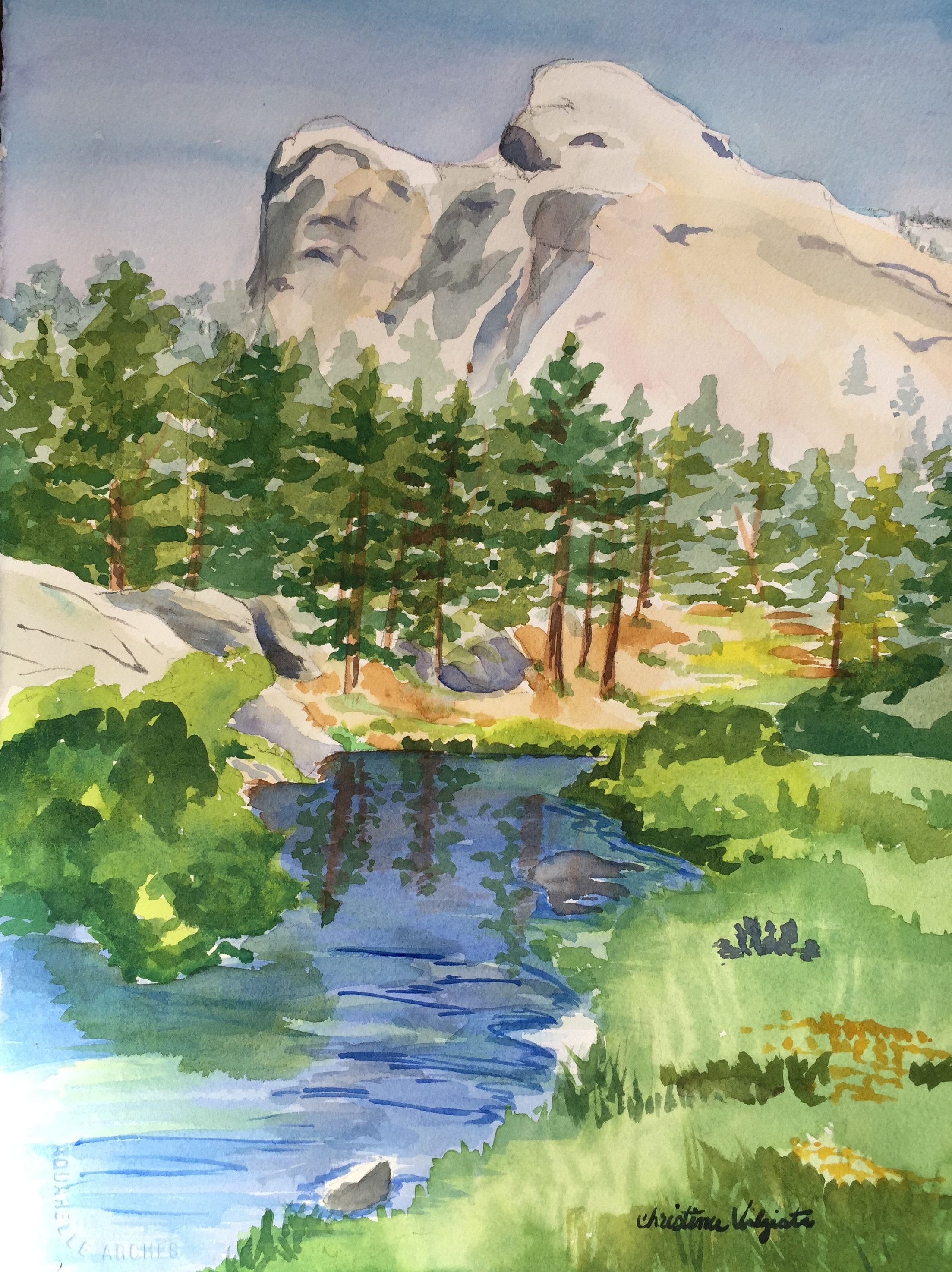 Original Watercolor Painting After The Hayman Fire Landscape