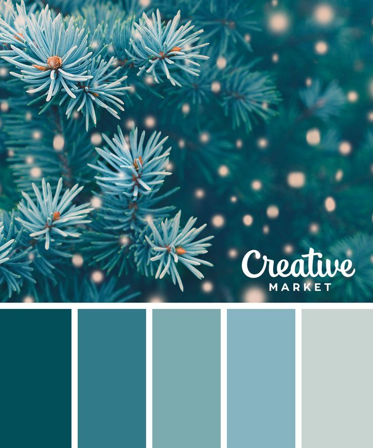 Photo of On the Creative Market Blog – 15 Downloadable Color Palettes For Winter
