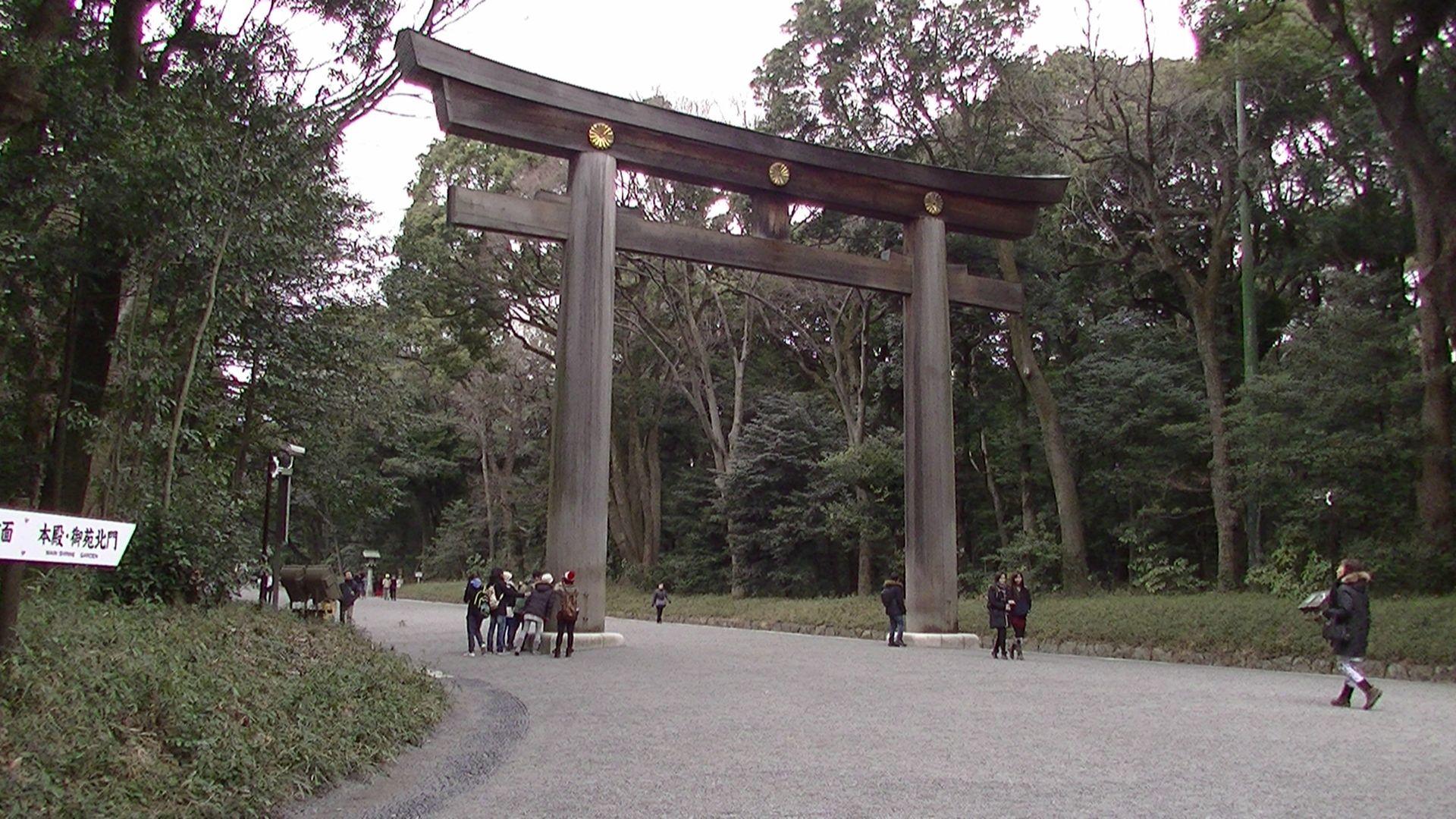 #japan#japon#torii#temple