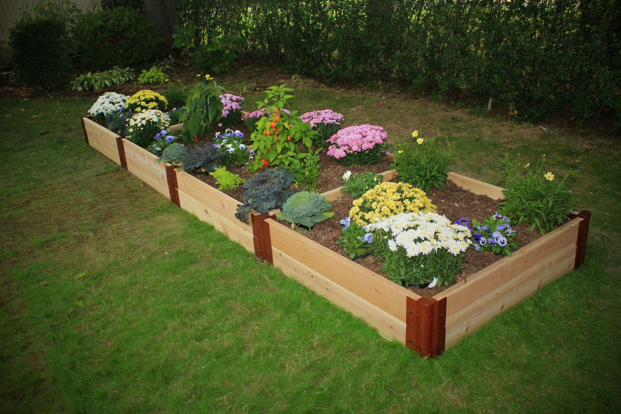 plans beds legs attractive of piquant kit garden bed raised cedar elevated