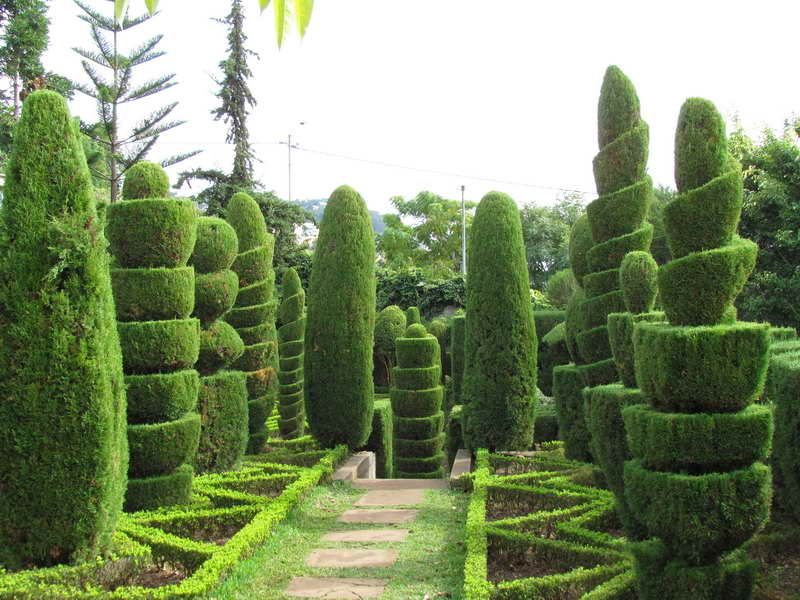 Marvelous Topiary Garden Design Ideas Part - 10: Small Garden Pics With Topiary To Improve Your Garden: Beautiful .