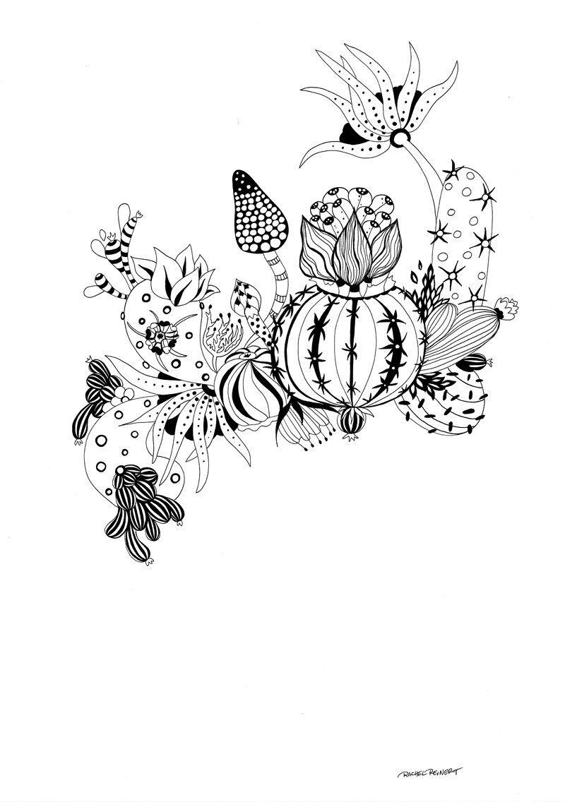 Botanical art coloring book - Amazon Com Botanical Wonderland A Blissful Coloring Retreat 9781942021964 Rachel