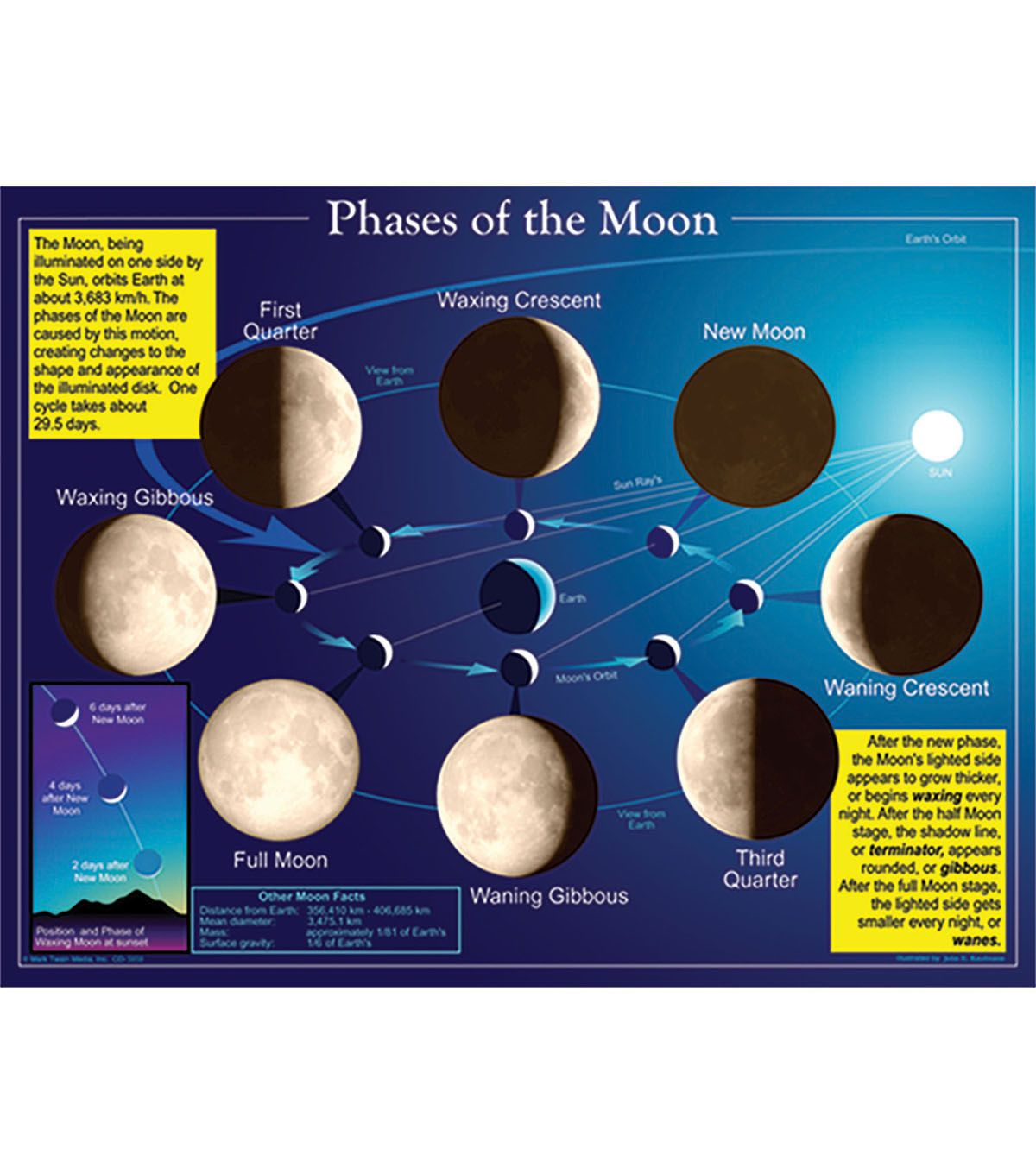 Carson Dellosa Phases Of The Moon Chart 6pk