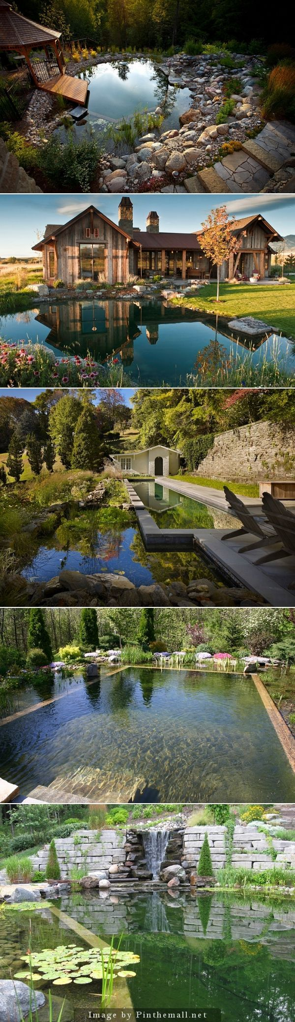 Look at these beautiful natural swimming pools! Could double as froggy habitats, no?