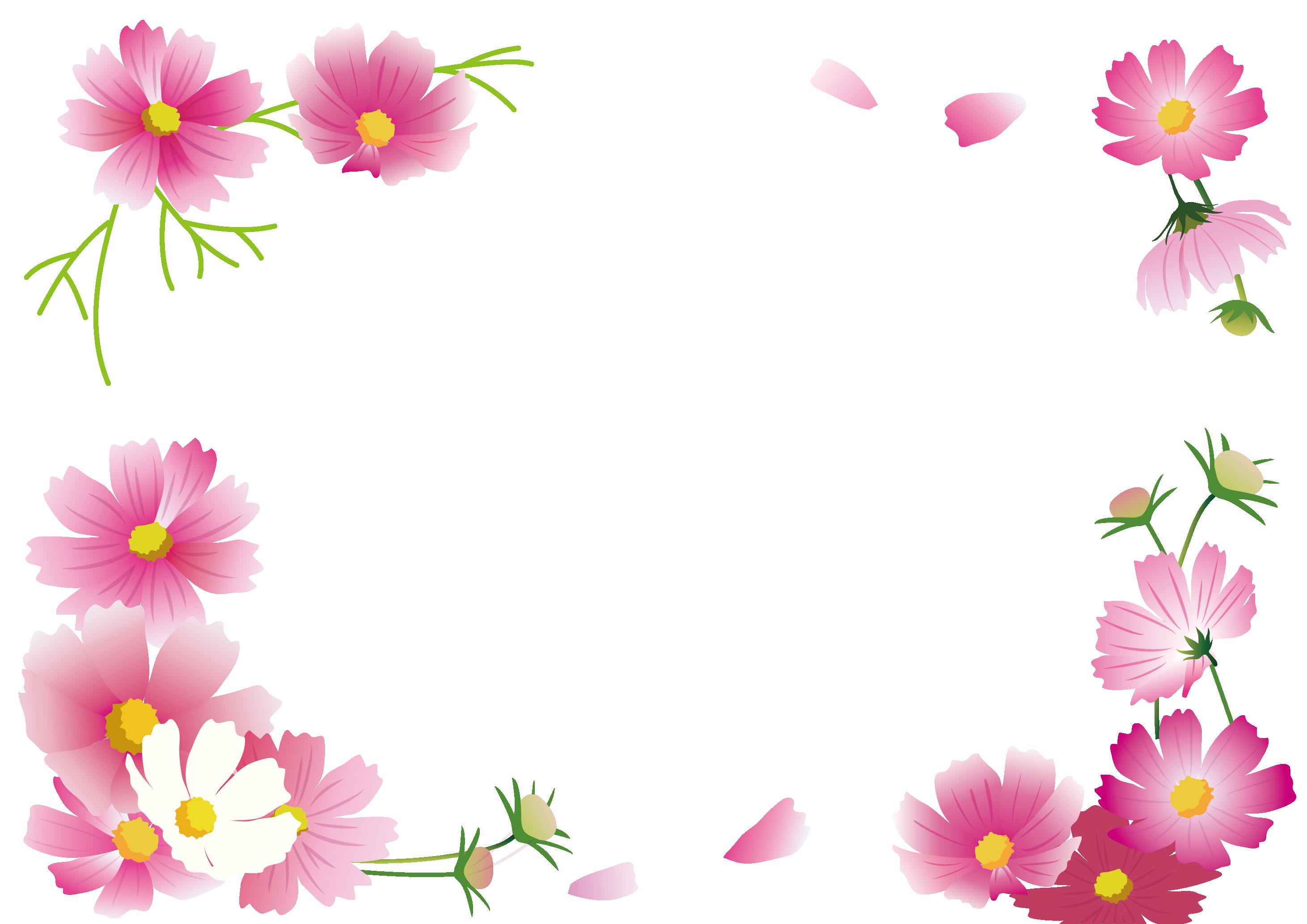 コスモスの花フレーム 花 フレーム花 壁紙フレーム 無料