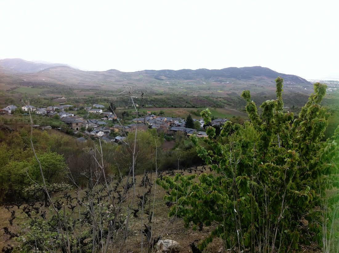 Viña, San Juan de Palazuela…