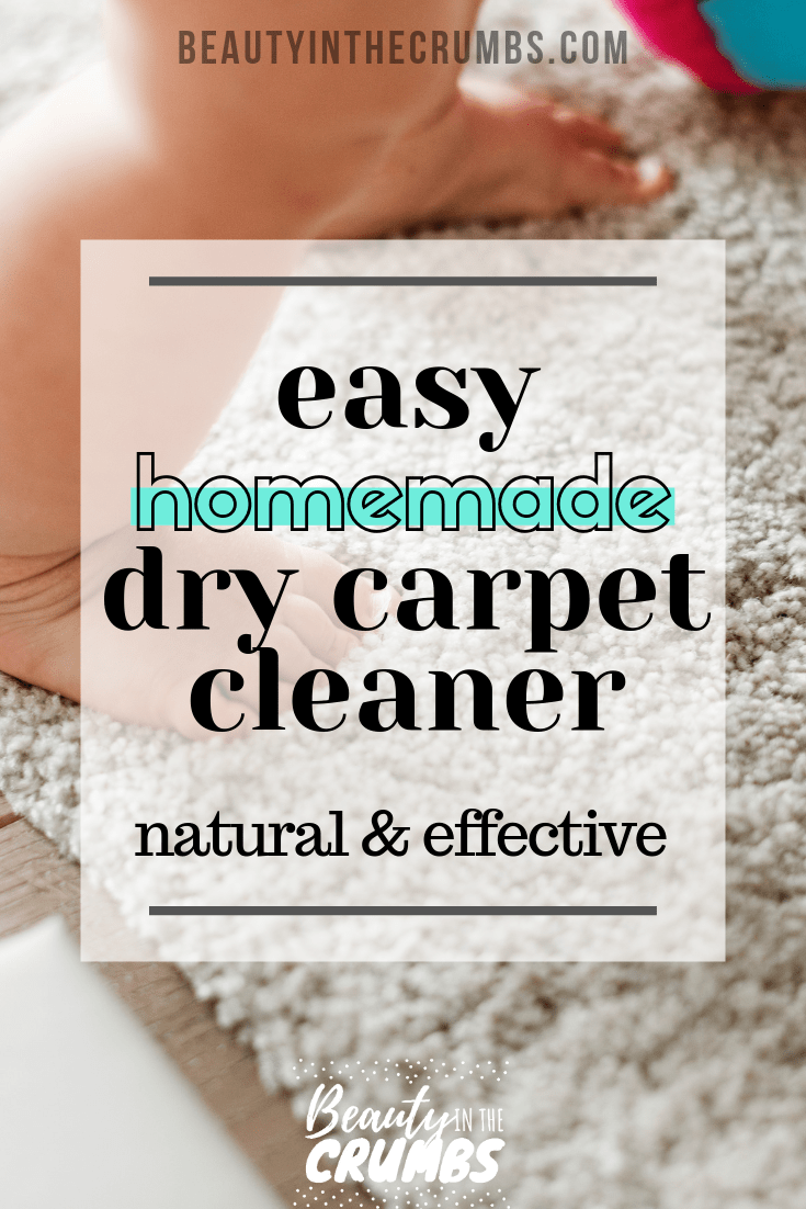 Homemade Dry Carpet Cleaner Best Of Beauty In The Crumbs