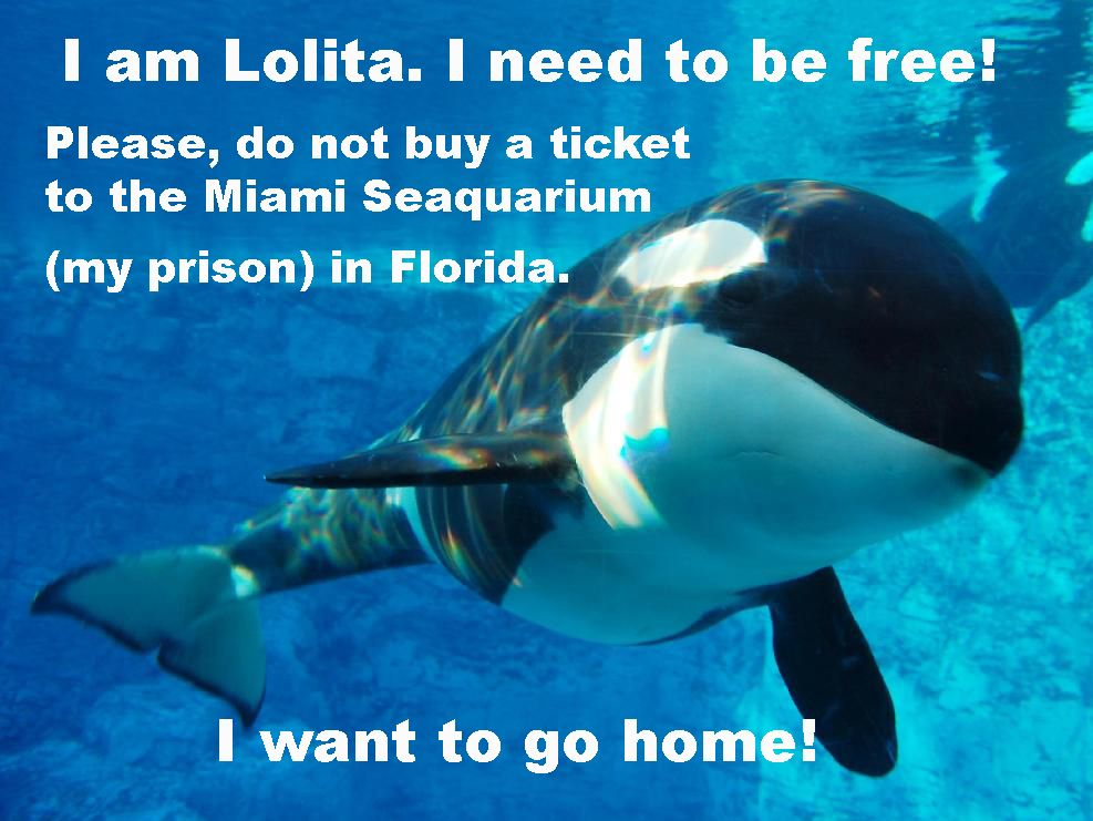 In May, following a petition by ALDF, PETA, Orca Network, and - importance of petition