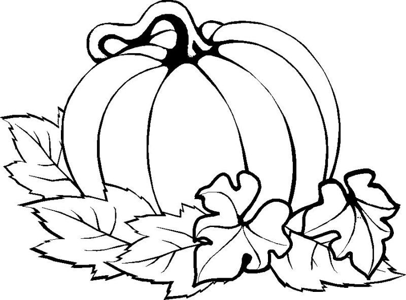 Pumpkin Easy Thanksgiving Coloring