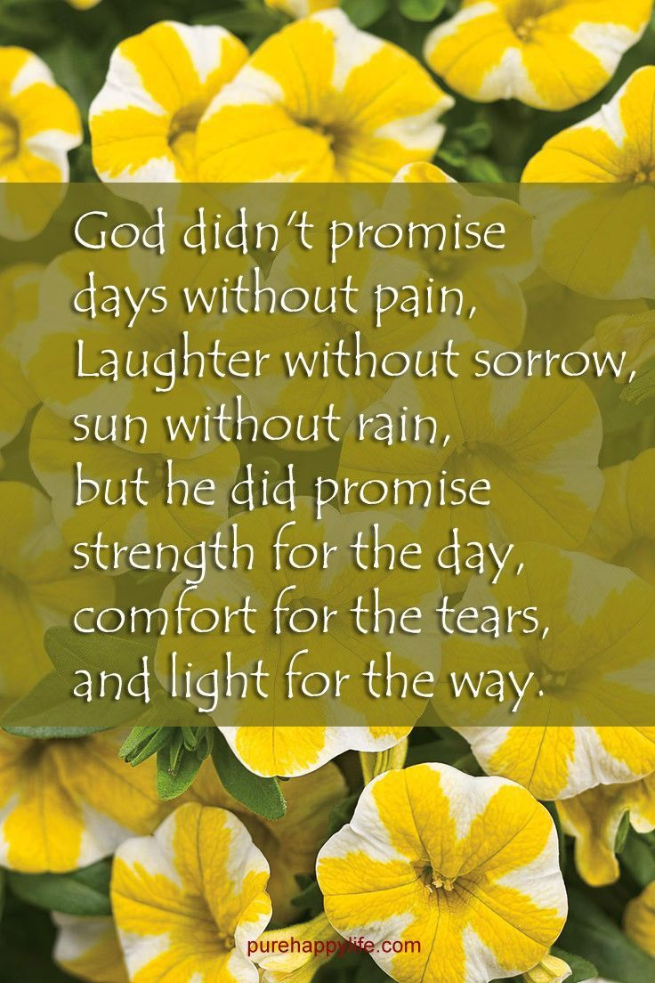 God did not promise us days without pain...