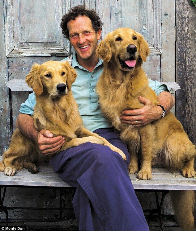 My Golden Wonders Monty Don S Dogs Have Become The Real Tv Show