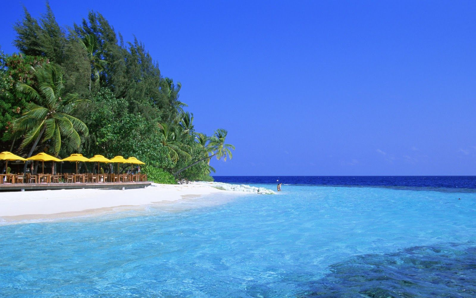 Tropical Island Beach Ambience Sound: Tropical Vacation