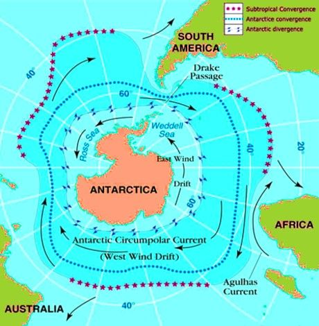 BSB Ocean current map: ocean water movements as the arctic current on australia beaches, australia moon, australia history, australia waves, australia birds, australia density, australia nature, australia storms, australia oceans, australia water, australia seasons, australia flooding, australia climate, australia temperature,