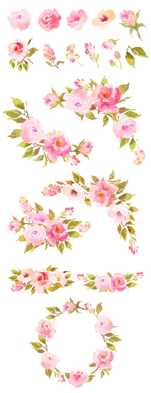 Flower Clipart Floral Clipat Roses Watercolor Clip Art Watercolor