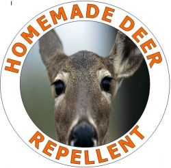 how to make deer repellent for plants