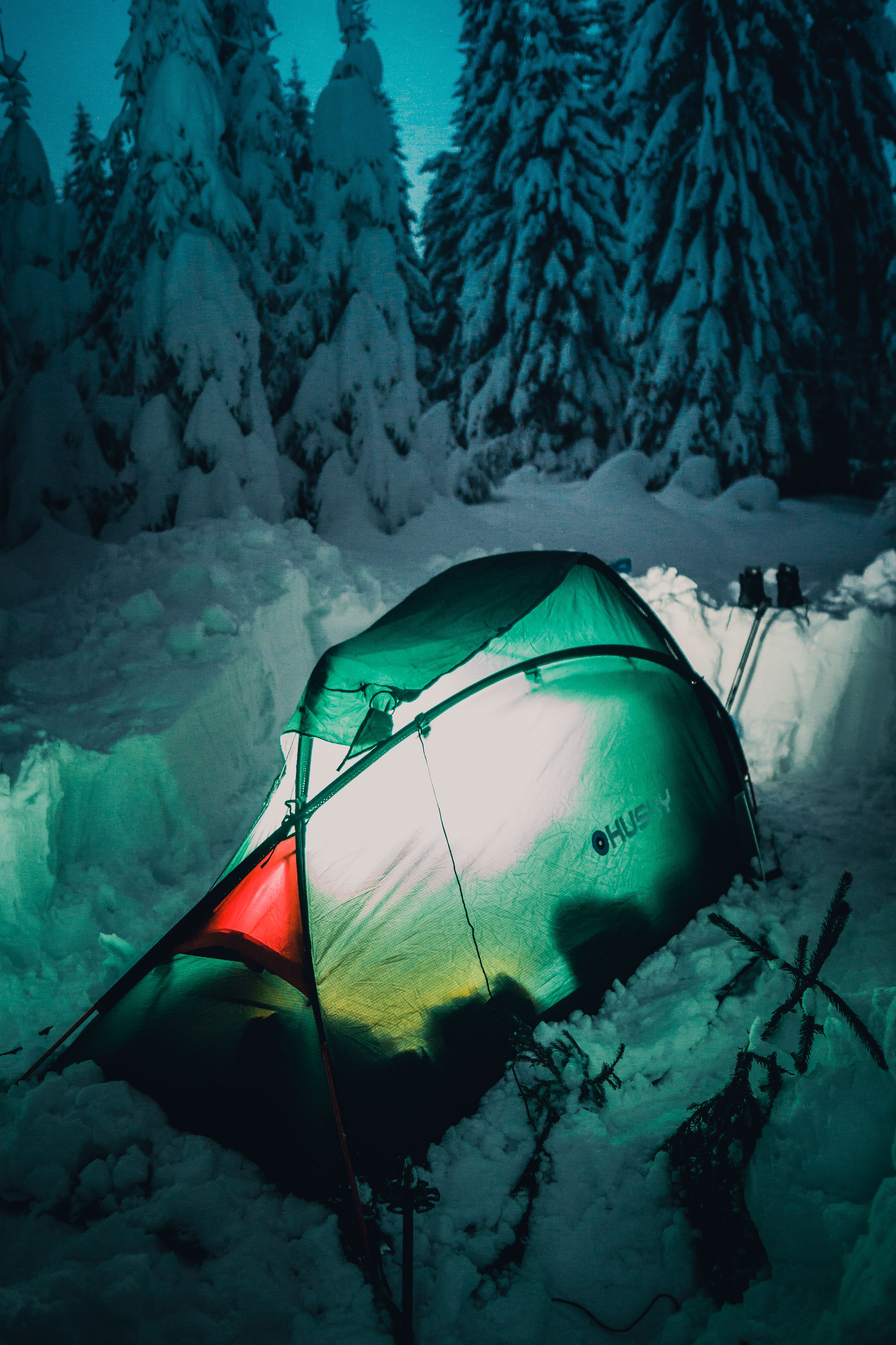 Green tent near pine trees during winter - Camping More ...