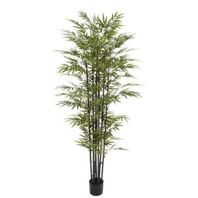 Woodland Imports Potted BK Bamboo Tree in Planter