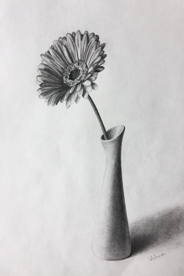 Easy Flower Pencil Drawings For Inspiration | Flower ...