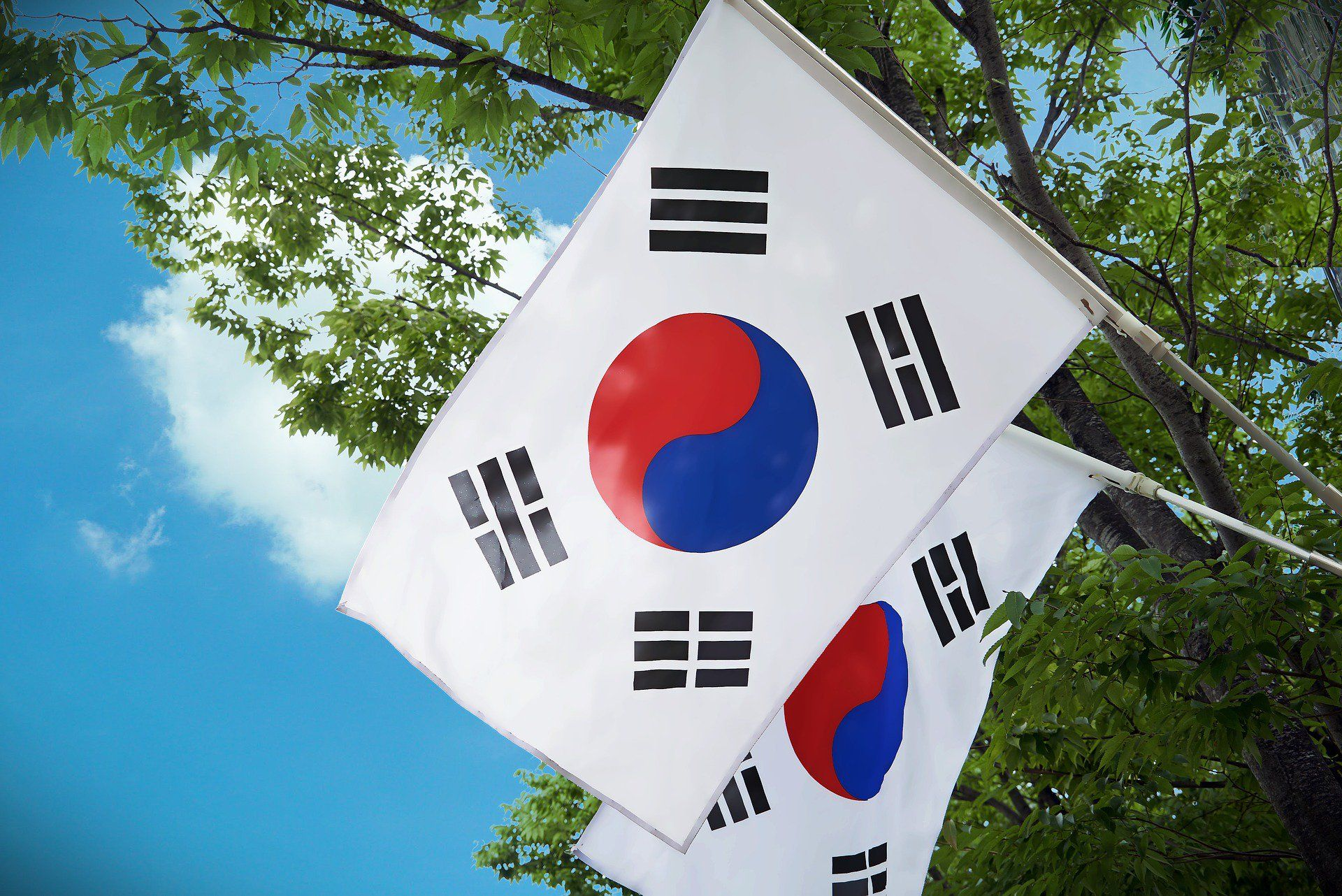 can korea ban cryptocurrency