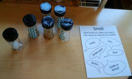 Science of Smell Experiments for Kids – for 5 senses theme - Inventors of Tomorrow