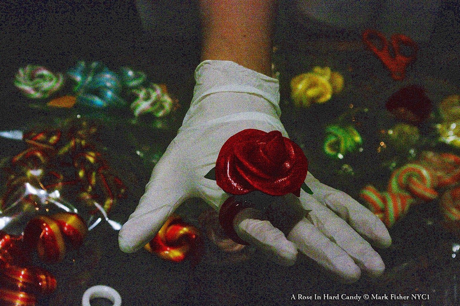 Mark Fisher American Photographer™: A Rose In Hard Candy • American Photographer Mark ...
