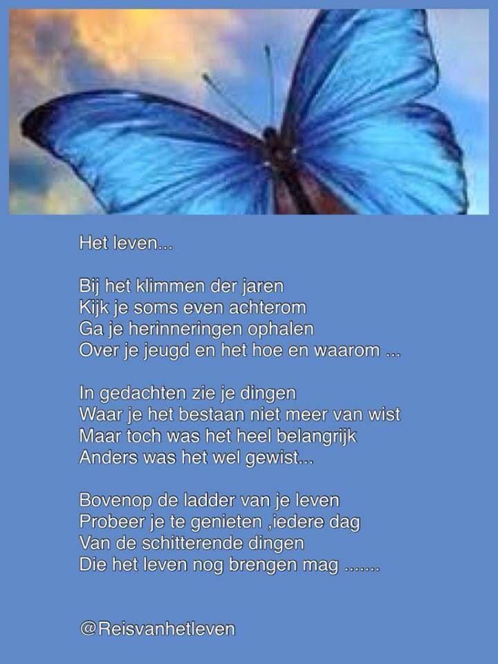 Citaten Yoga : Reis van je leven mooie teksten vlinders meditatie en