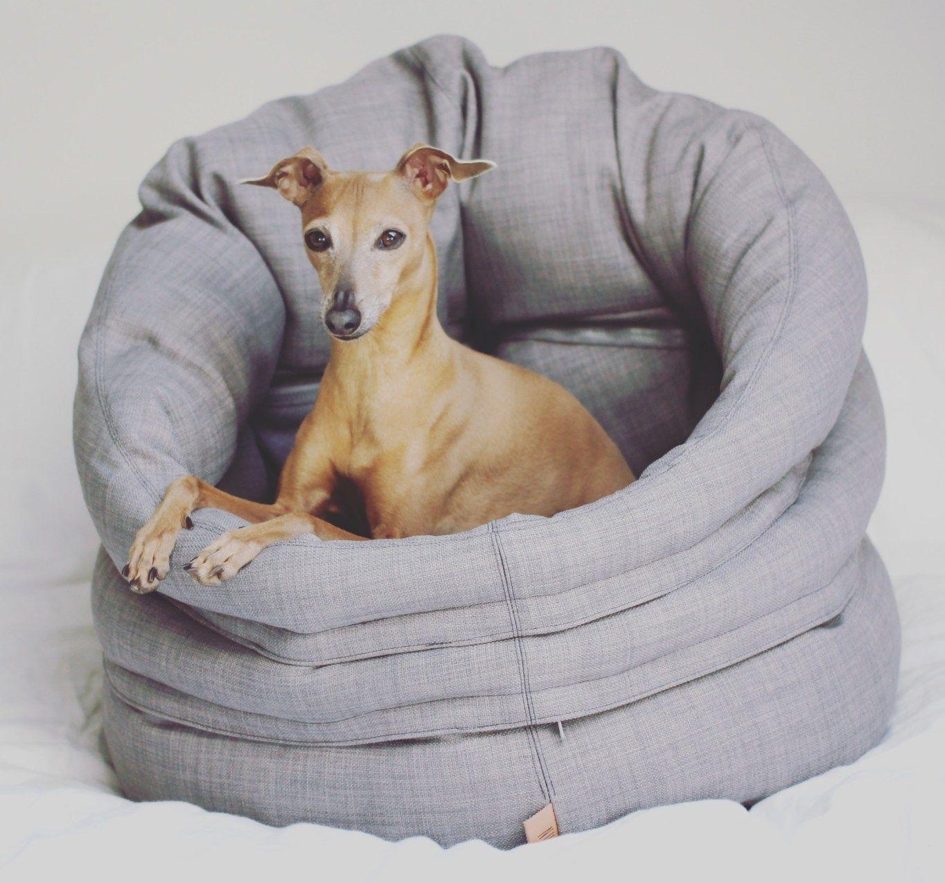 4 tipps f r einen entspannten b roalltag mit hund anzeige the windy willa sleepy. Black Bedroom Furniture Sets. Home Design Ideas
