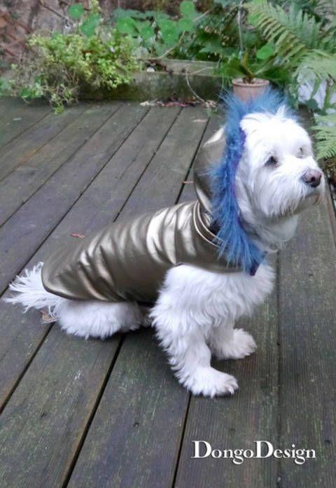 PDF Schnittmuster Hundemantel Chanell für Coco mit E-Book ...