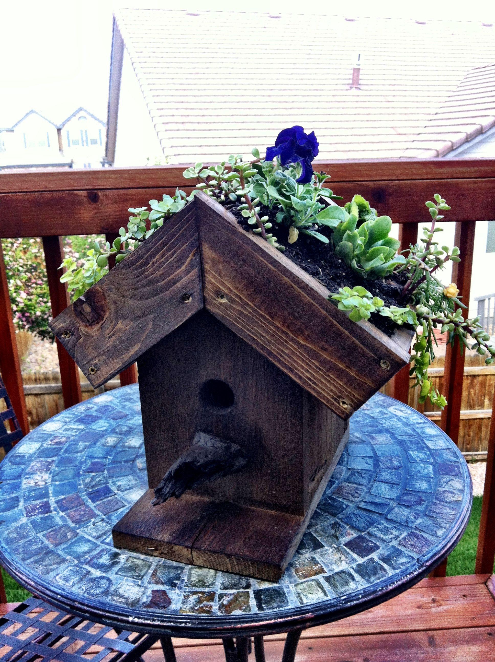 Living birdhouse