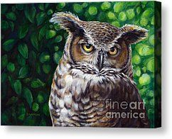 Wisdom Great Horned Owl Painting by Darlene Watters - Wisdom Great Horned Owl Fine Art Prints and Posters for Sale