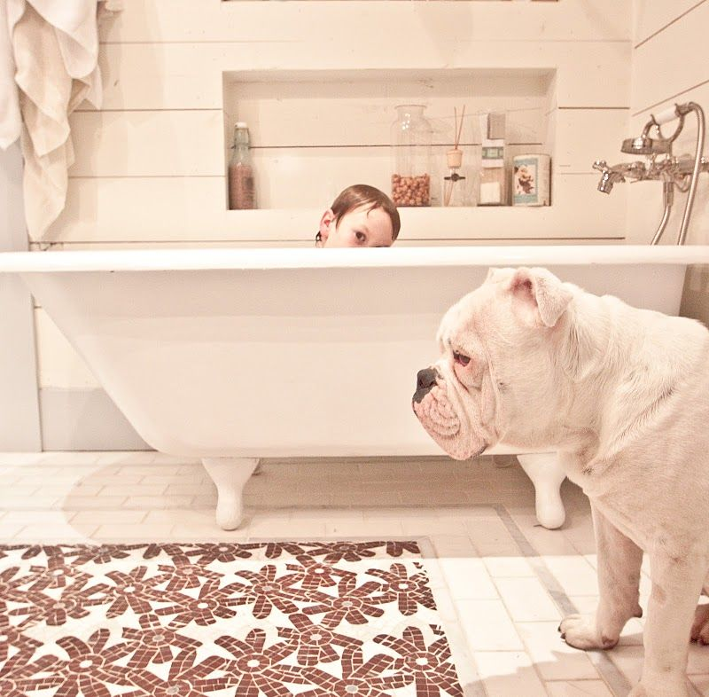 Bath   shiplap Tile floor. shiplap Tile floor   Bathroom   Pinterest   Cas  Thoughts and The wall