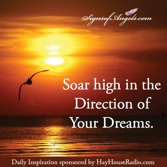 Soar High In The Direction Of Your Dreams Dreaming Of You Inspirational Message Soar