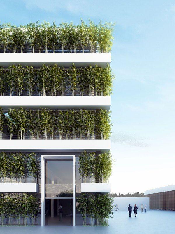 Das gr ne haus garten und architektur pinterest architektur gr ne architektur und moderne - Grune architektur ...