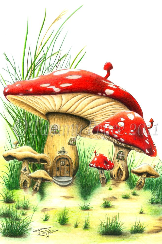 Mushroom house fairy tale fantasy fine art print fae for Fairy on a mushroom drawing