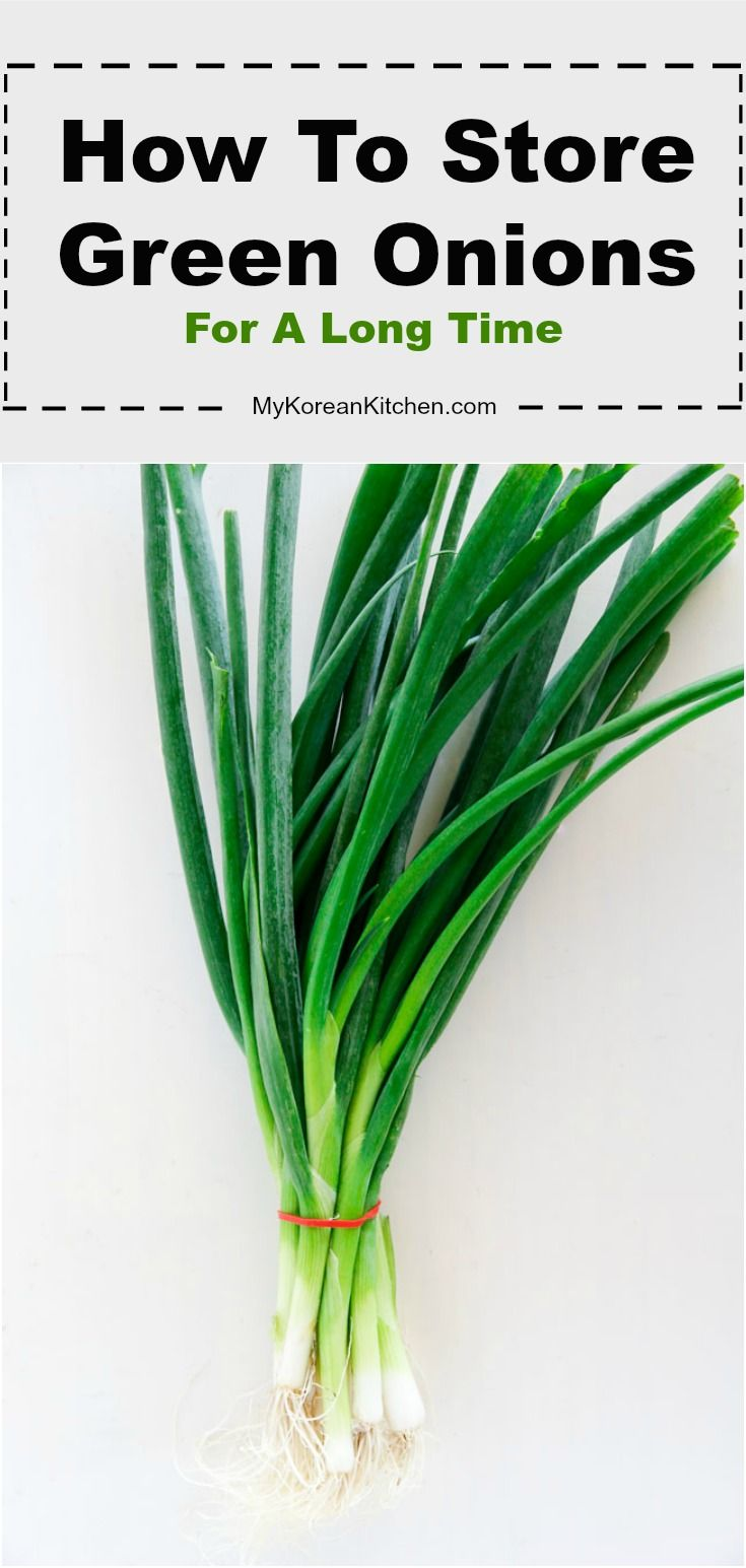 How to store green onions scallions green onions