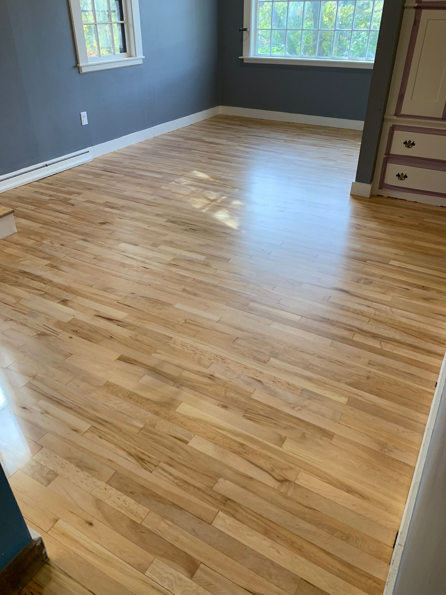 Birch Hardwood Flooring Hardwood Birch Hardwood Floors Hardwood Floors