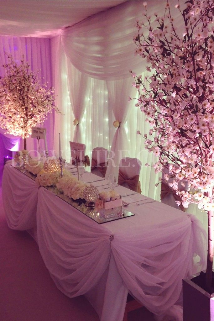 Blossom Trees 75 00 Bows Hire Wedding Top Table Blossom Tree Wedding Blossom Trees