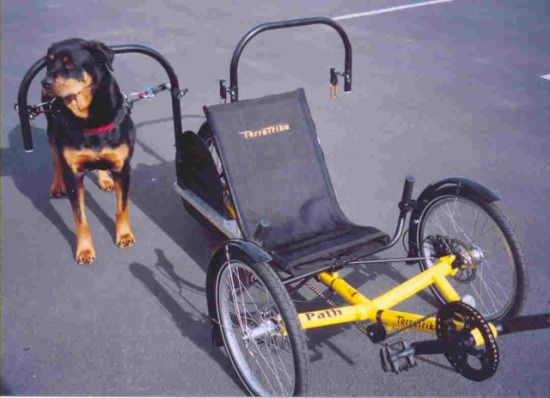 Urban Mushing Inventor Creates Dog Behind The Wheel Power And A