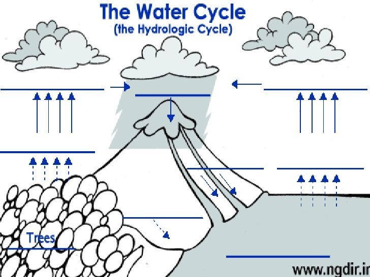 water cycle diagram not labeled gallery