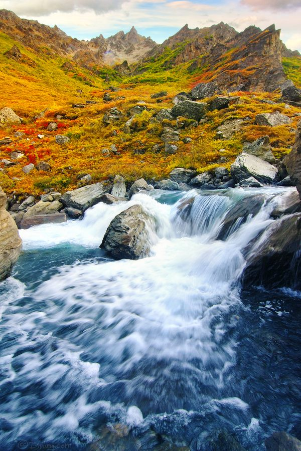 Savage River near the Savage River Campground in Denali National Park, Alaska. Photo by Dhilung Kirat.