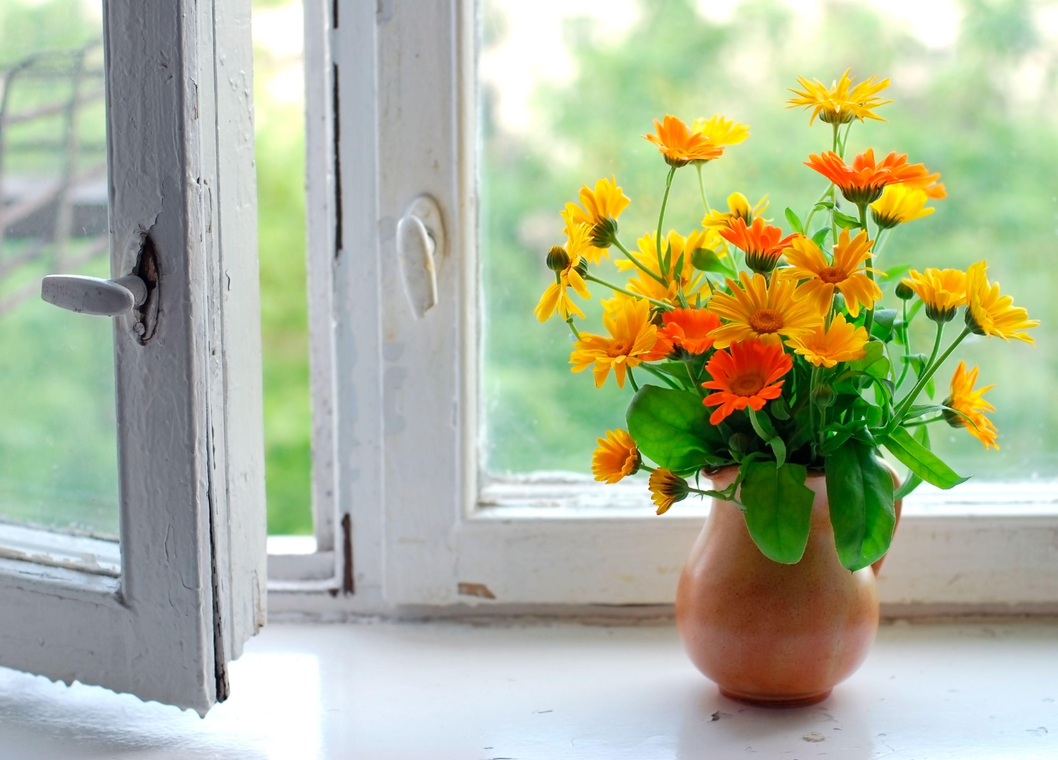 Как украсить окно в кухне шторами фото сервис удаленной
