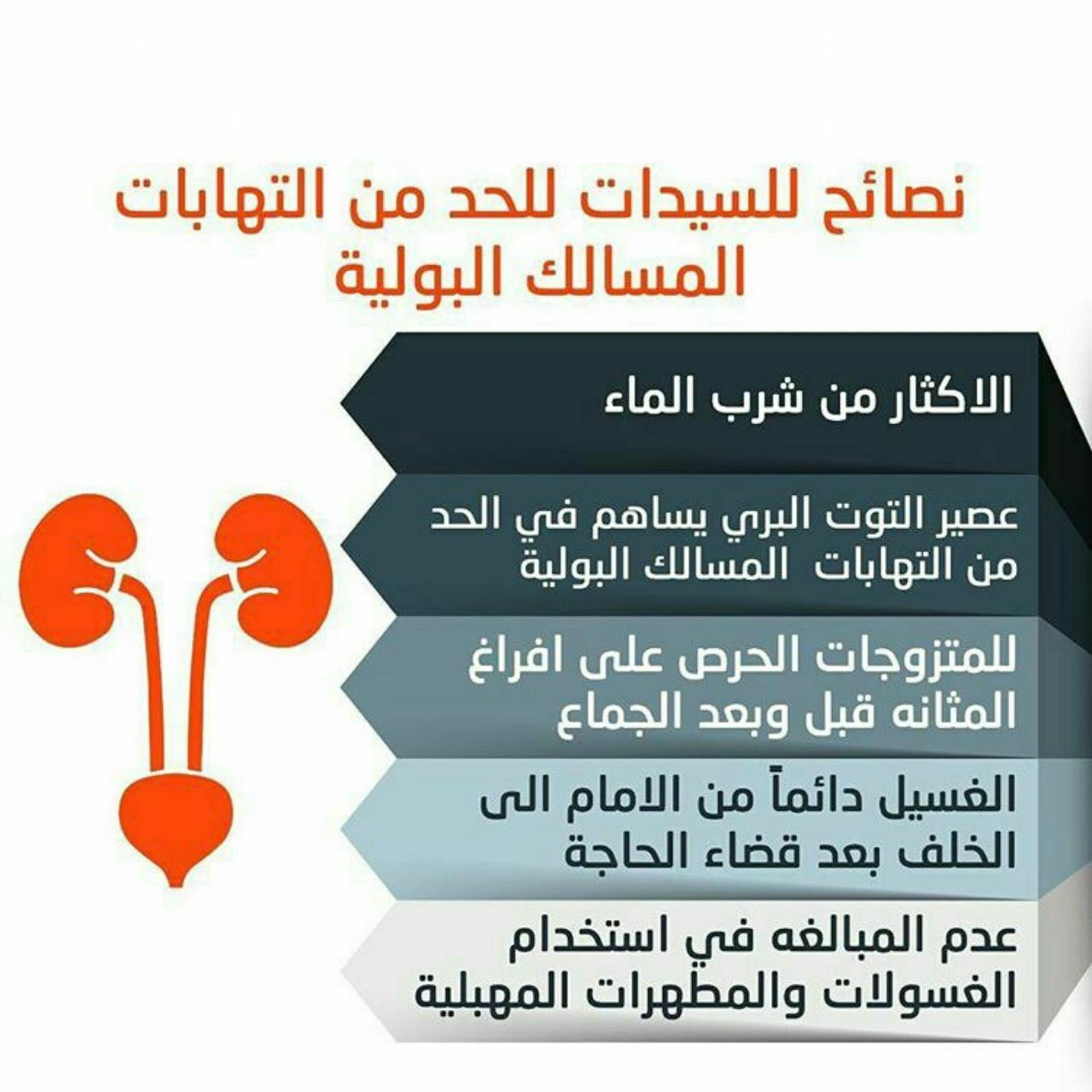 نصائح للسيدات للحد من التهابات المسالك البولية Health Advice Health Advice